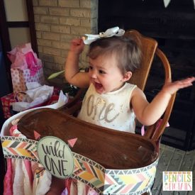 Wild One – One Year Old Theme and Decoration Ideas