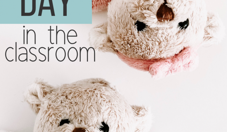 The Best Teddy Bear Picnic Day and Sleepover Ever